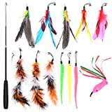 GOLDGE 13 Pcs Cat Feather Toy, Cat Teaser Wand with 12 Refills, Interactive Retractable Cat Toy Wand for Exercising Kitten or Cat
