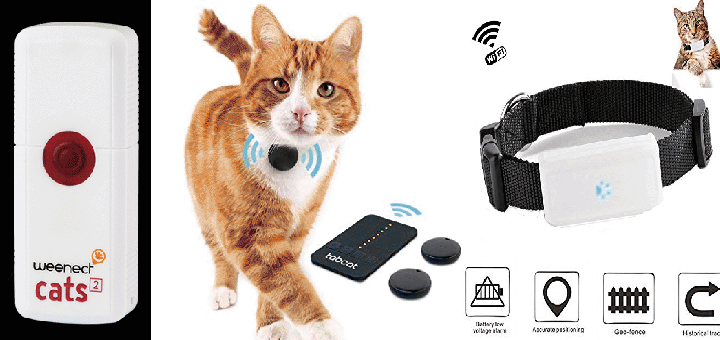 The 9 Best Cat Trackers of 2019 - Buskers Cat