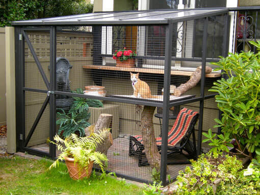 10 Best Cat Enclosures For Your Feline Friend To Enjoy Nature 1