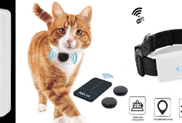 The 9 Best Cat Trackers of 2021