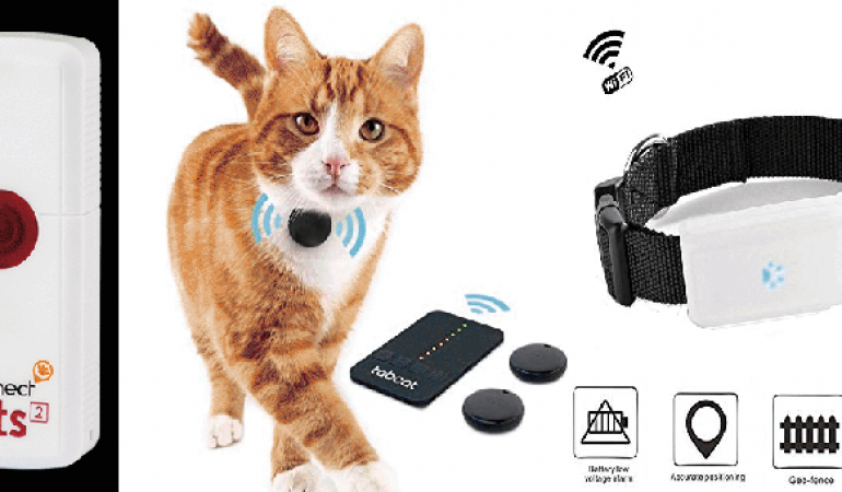 Buying a Cat Tracker